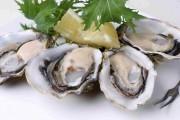 Tinh Chất Hàu Swanson Oyster Extract