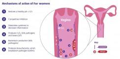 Men Vi Sinh OptiBac Probiotics Cho Phụ Nữ Của Anh