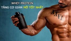 Whey protein nào tốt nhất? Top Whey tăng cơ giảm mỡ tốt nhất