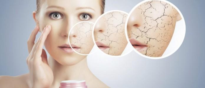 Review top sản phẩm kem dưỡng ẩm cho da khô mùa đông