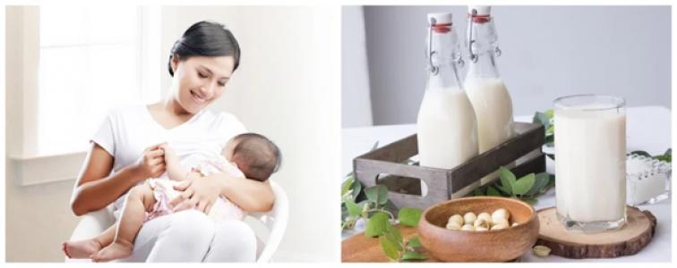 [GIẢI ĐÁP] Mẹ sau sinh nên uống sữa gì để nhiều sữa và giúp bé tăng cân?