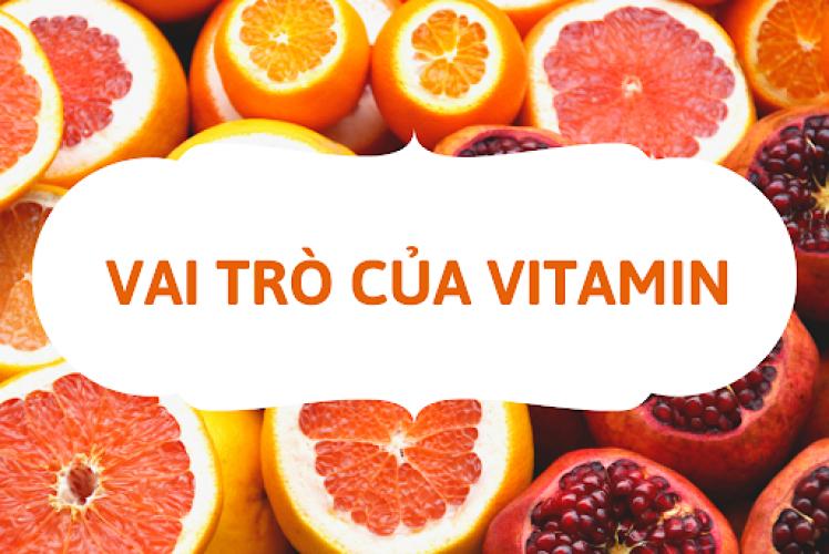 Bật mí vai trò của vitamin đối với cơ thể