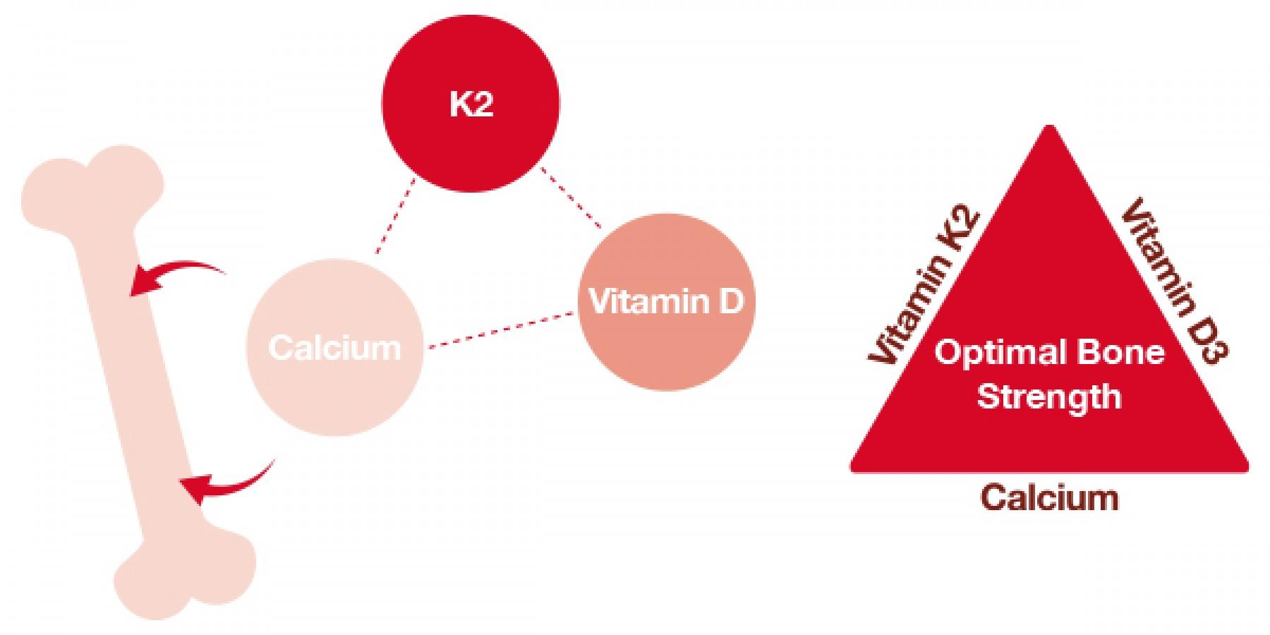 Vitamin D3 + K2 LineaBon Hỗ Trợ Hấp Thu Canxi