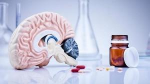 Bổ não - Tăng cường trí nhớ