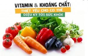 Vitamins & Khoáng chất